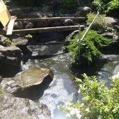 池の汚泥清掃④
