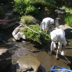 池の汚泥清掃③